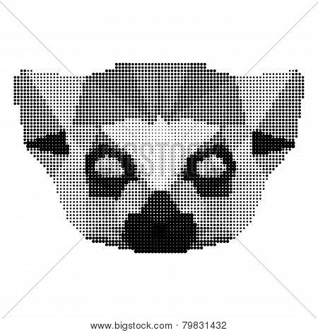 Abstract Monochrome Lemur Portrait Of Circles Isolated On White Background