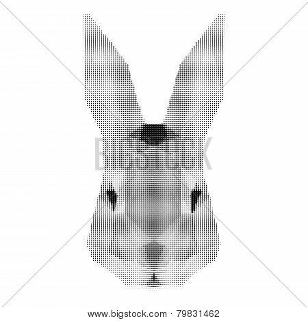 Abstract Monochrome Rabbit Portrait Of Circles Isolated On White Background