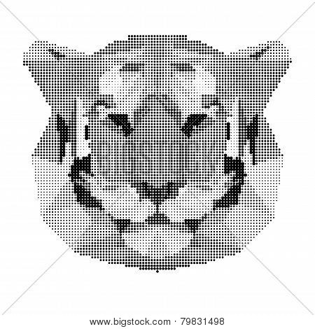 Abstract Monochrome Tiger Portrait Of Circles Isolated On White Background