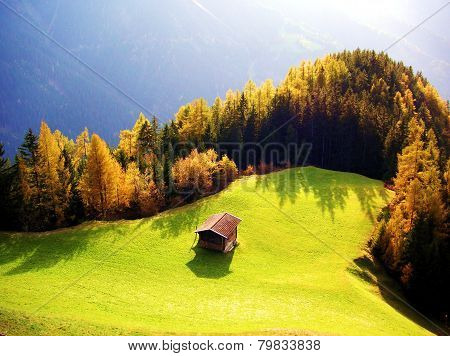 Hut in the autumn forest clearing