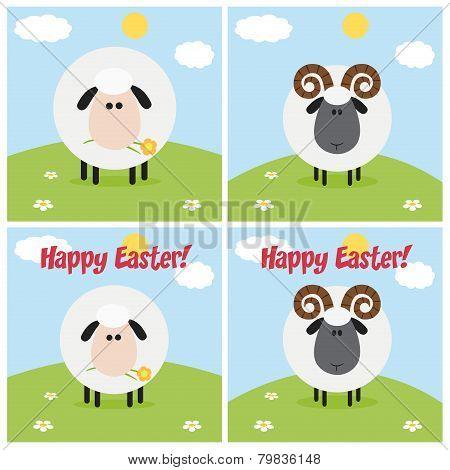 Ram And Sheep Greeting Card Modern Flat Design. Collection Set