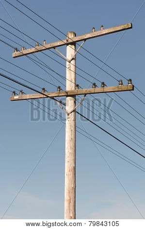 Telephone Pole