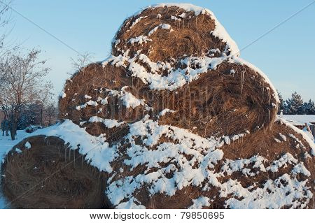 Pyramid Of Haystacks Covered With Snow