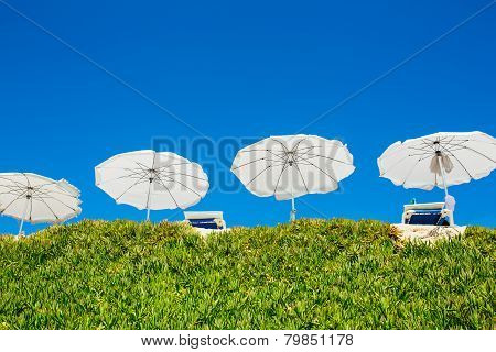 White sun beach umbrellas (parasol)