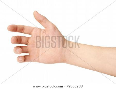 Hand Of A Man