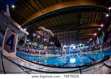 Milan - December  23:  S. Negri  (italy)  Performing In  Swimming Meeting Brema Cup On December  23,