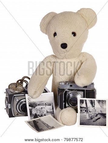 Teddy Bear With Old Cameras and Photos of Young Boy