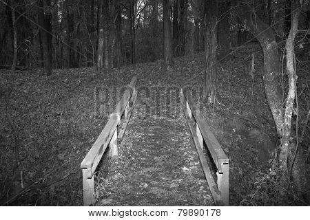 old bridge in woods