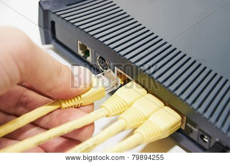 Connect The Cable To The Network Switch