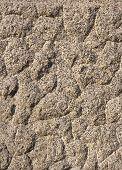 foto of feldspar  - The texture of the processed gray granite closeup - JPG