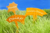 image of thankful  - Three Labels With German Text Danke And Vielen Dank Which Means Thank You And Thank You Very Much On Sunny Green Grass For Spring Or Summer Feeling And Blue Sky