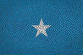 pic of stingray  - Somalia Flag painted on stingray skin texture - JPG