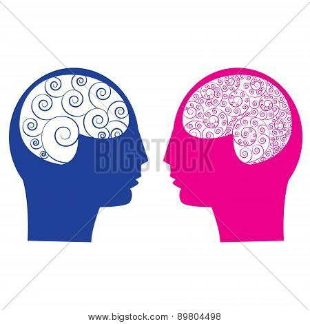 male brain vs female brain
