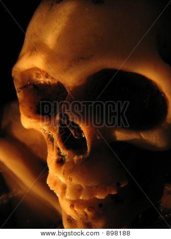 Creepy Skull2