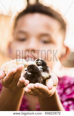 Single Girl Holding Three Chicks