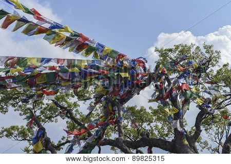 Closed Up The Prayer Flag In Nepal