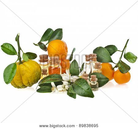 Glass bottles of herbal essences oil with fresh variety citrus  isolated on white background
