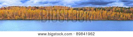 Mellow autumn on river coast panoramic