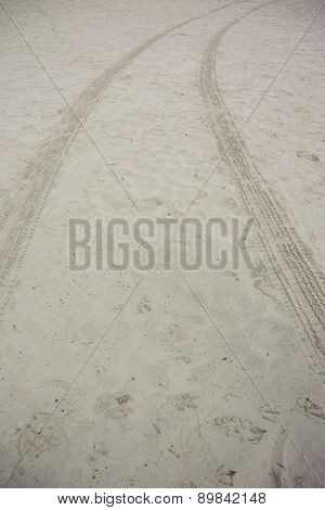 Tire Tracks In Sand Vertical