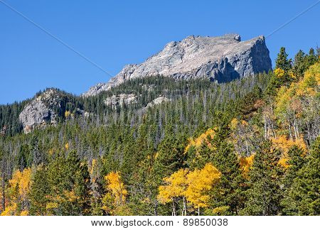Mountain Scenic in Fall