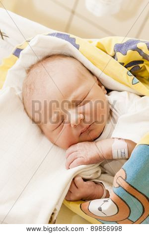 portrait of a newborn baby girl in maternal hospital