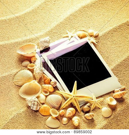Summer like old style empty photo cards lying on a sea sand and framed with shells. Sunny summer background. Space for your text.