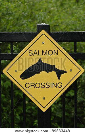 Salmon Crossing Sign In Vancouver Canada