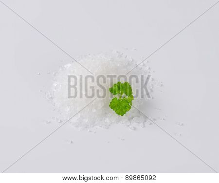 heap of coarse sea salt with piece of parsley