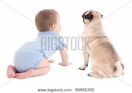 Back View Of Baby Boy Toddler And Pug Dog Isolated On White