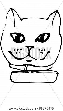 Vector Sketch Beautiful Cat Muzzle