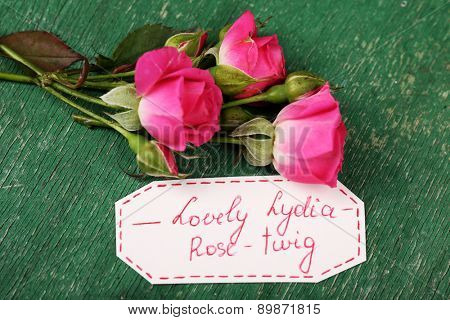 Beautiful rosy twig with tag on wooden background