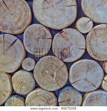 cut logs, wood texture background