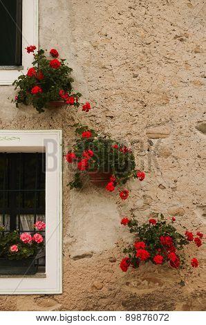 A Floral Diagonal