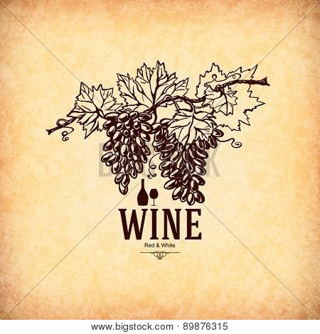 Wine list design. With hand drawn grape