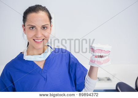 Smiling dentist showing a model in dental clinic