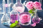 foto of flask  - alchemy and aromatherapy set with rose flowers and chemical flasks - JPG