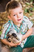stock photo of duck  - Cute Caucasian male child with duck his pet duck - JPG