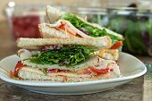 picture of tomato sandwich  - Simple turkey sandwich on honey wheat bread with lettuce and tomato.