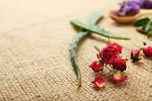 picture of sackcloth  - Green herbs and leaves on sackcloth - JPG