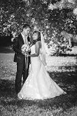 picture of bridal veil  - Bride and Groom at wedding Day walking Outdoors on spring nature - JPG