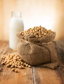 stock photo of soybeans  - Soybeans - JPG