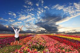 image of buttercup  - Enthusiastic tourists threw up his hands - JPG