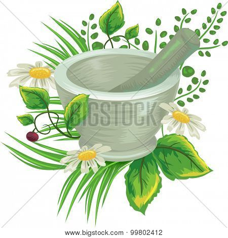 Illustration of Herbs Surrounding a Mortar and Pestle