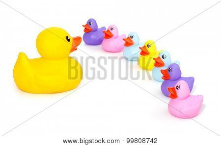Big rubber duck speaking in front of little rubber ducklings - concept for leading or teaching