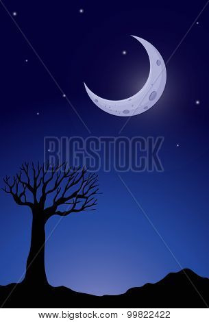 Silhouette tree at nighttime illustration