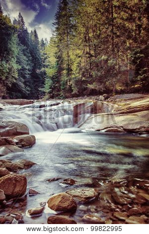 Beautiful waterfall in the forest, fresh falling water between stones in mountainous pine woods, amazing landscape, beauty of Ukrainian nature