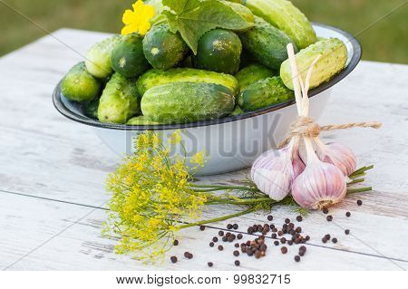 Cucumbers In Metal Bowl And Spices For Pickling Cucumbers In Garden On Sunny Day