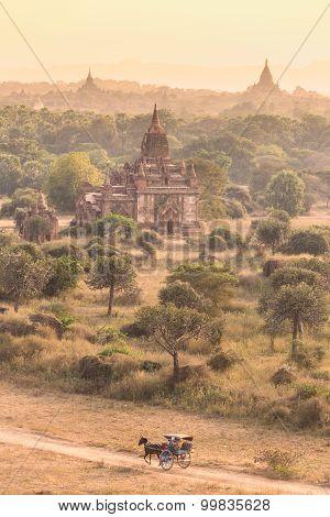 Temples of Bagan, Burma, Myanmar, Asia.