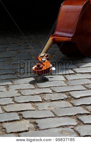 double bass still life music