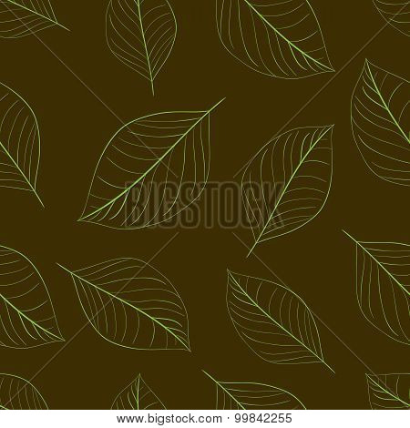 Contours of simple leaves